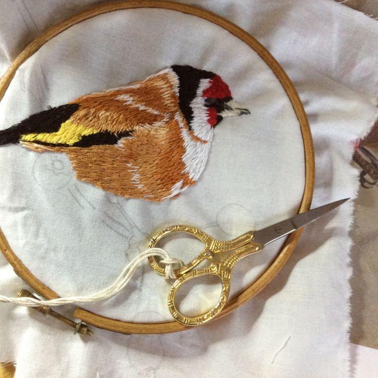 Goldfinch in progress. From Irish garden birds series. www.violetshirran.com