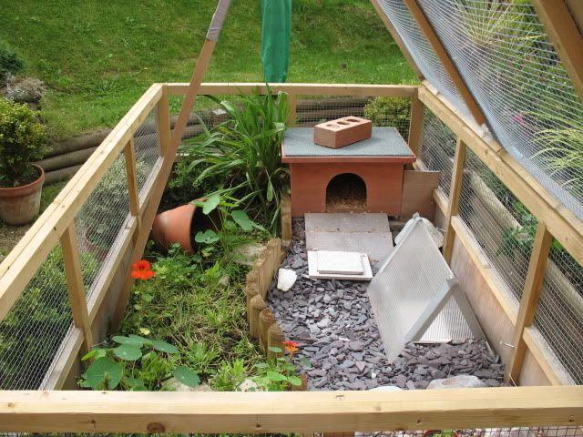 Need advice on my indoor enclosure - Tortoise Forum