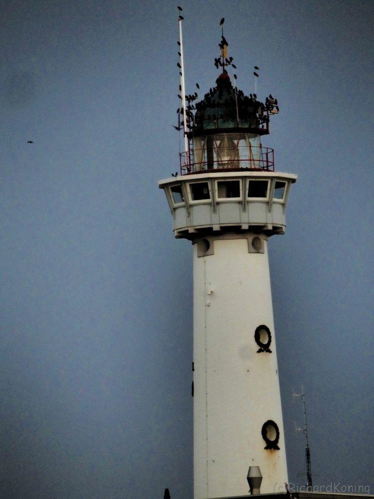 Lighthouse Egmond aan Zee NL