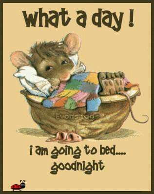 Mouse off to bed!!                                                                                                                                                     More