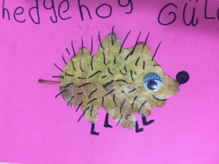 #leaf #hedgehog