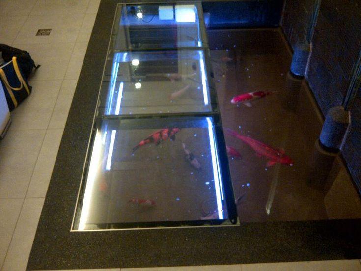 19 best fish tanks images on pinterest fish tanks for Fish tank riddle