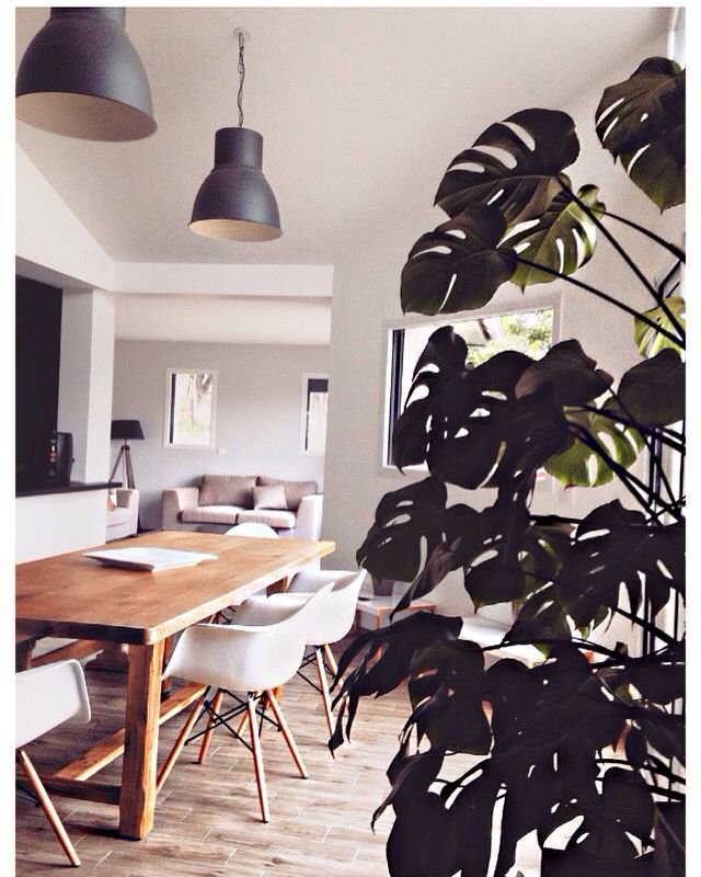 deco chaises scandinaves table bois lustres ikea plante exotique with lustre ikea boule. Black Bedroom Furniture Sets. Home Design Ideas