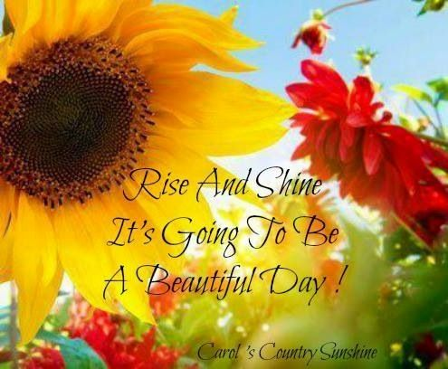 Beautiful day quote via Carol's Country Sunshine on Facebook