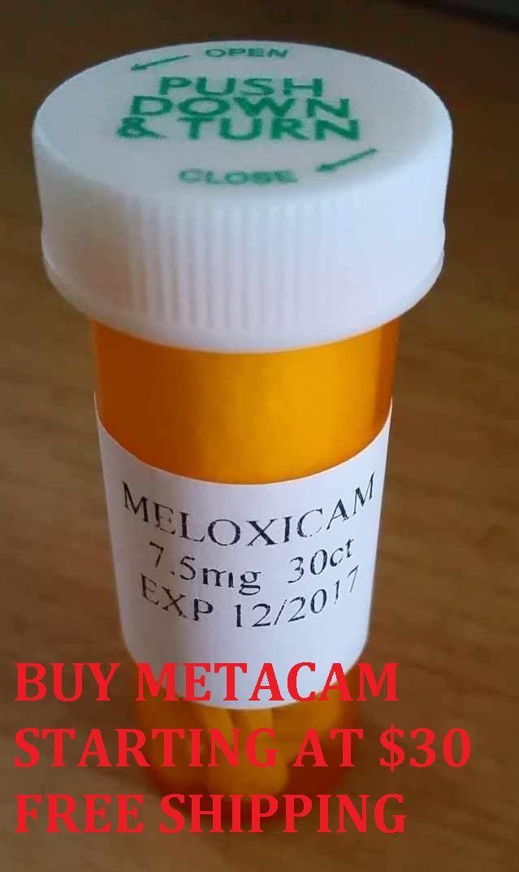 Meloxicam For Dogs No Prescription Rx Metacan Clavamox For