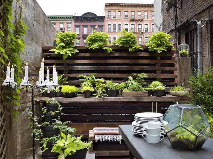 aménager le petit jardin en ville avec brise-vue en palettes et plantes vertes