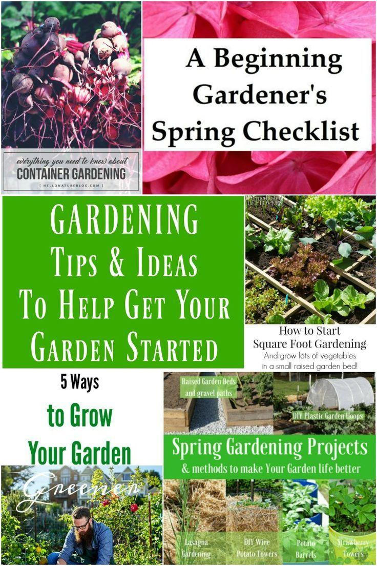 Gardening Tips & Ideas to Help Get Your Garden Started