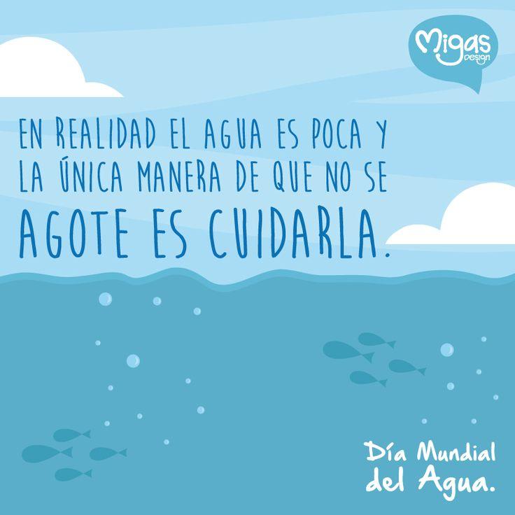 #DíaMundialDelAgua #MigasDesign