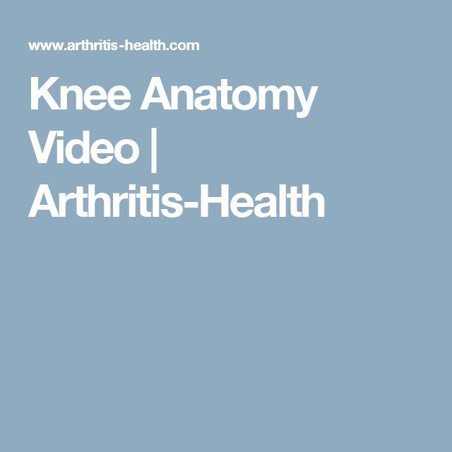Knee Anatomy Video   Arthritis-Health