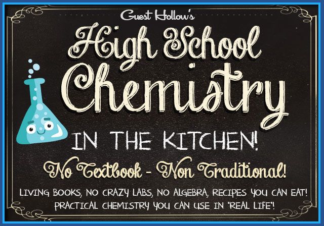 Visitor Hole's Chemistry within the Kitchen Curriculum