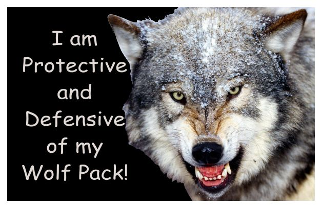 wolf quotes about strength                              …
