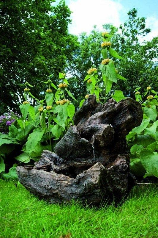 52 besten Steingarten Bilder auf Pinterest Steingarten, Gärten