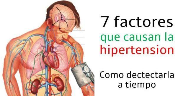 7 factores que causan la hipertension: aprende a detectarlos a tiempo