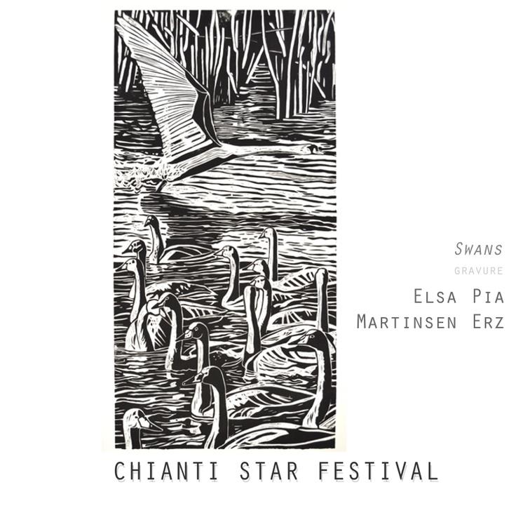 Chianti Star Festival - Else Pia Martinsen Erz - Swans