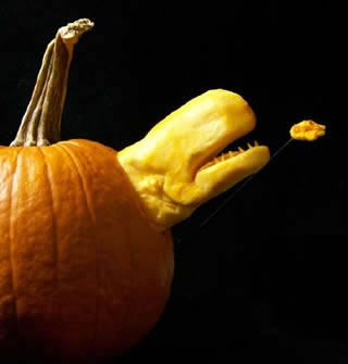 1000 images about pumpkin carving designs on pinterest for Different pumpkin designs