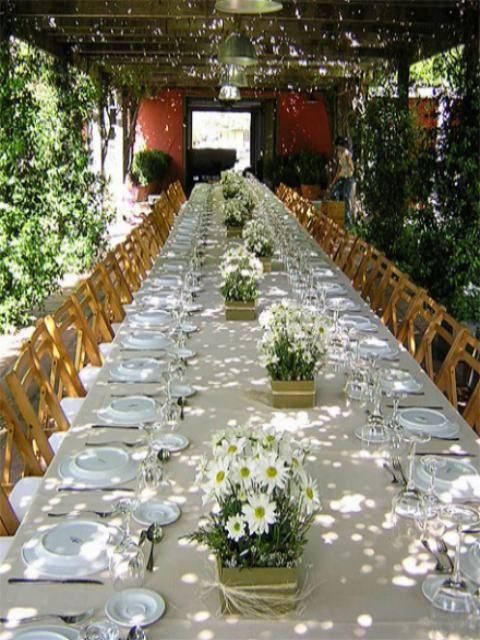 Arreglos florales margaritas