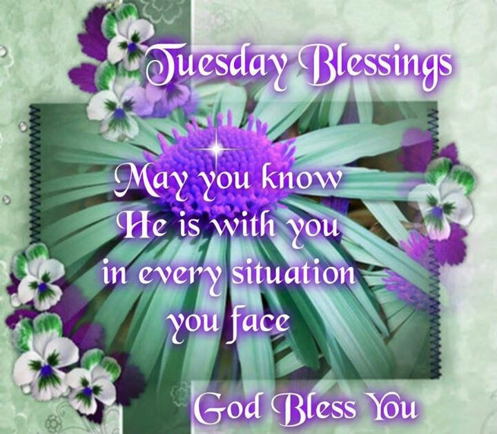Blessed Tuesday Quotes Pics Happy Tuesday Good Morning Pictures