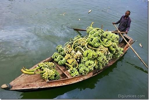 Bananas on boat in Bangladesh