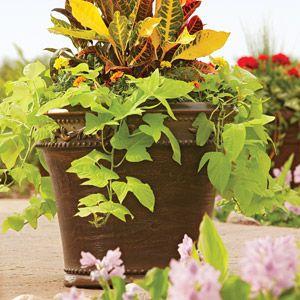 Better Homes And Gardens Monteverde Planter Multiple Sizes Better Homes And Gardens Home And