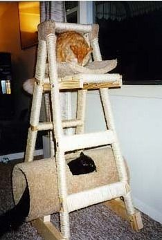 """The other day a friend asked me if I knew how to make a cat tree from a ladder? When I heard this question I thought... """"Are you kidding... Make..."""
