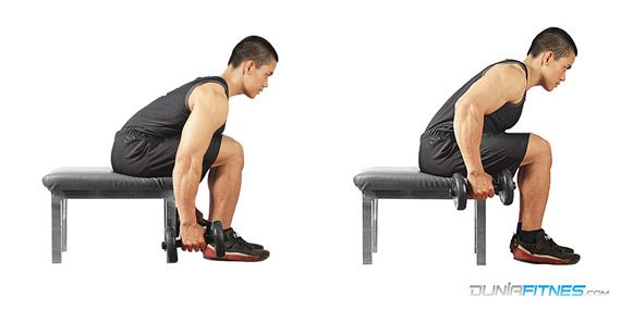 Seated Bent Over Row