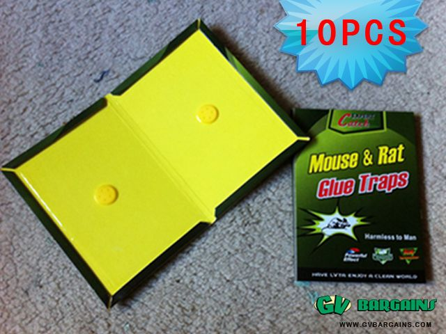 New store Big Sale Expert Catch Mouse & Rat Glue Traps_Daily use_GV Bargains : SPECIALS