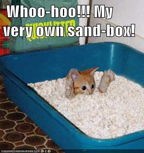 Whoo-hoo!!! My very own sand-box!