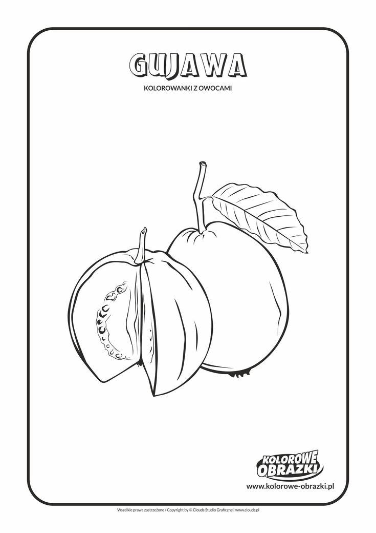 Kolorowanki dla dzieci - Rośliny / Gujawa. Kolorowanka z gujawą