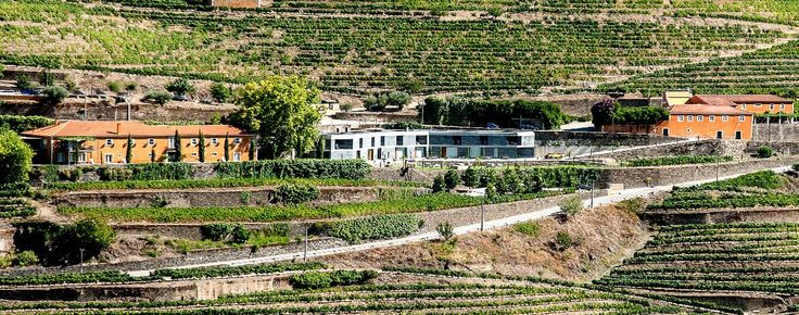 Rio Duoro Wine Tasting: Quinta do Vallado