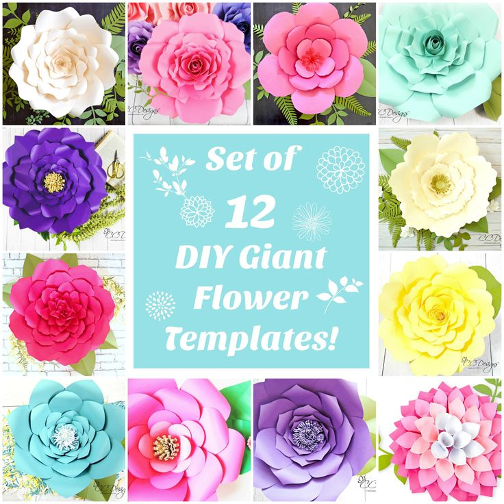 Amazing set of 12 giant paper flower templates. Thats less then $3.75 per template! You wont find a better package anywhere!  Choose between easily hand cutting with scissors or using with a cutting machine. ♥♥♥ This listing includes 12 FLOWER TEMPLATES. ♥♥♥  ♥ Printable PDF outlines, SVG,and DXF files. Templates work with 8.5 x 11 card stock. 65lb weighted is best.  ♥ Templates in 5 different size petals for all except the roses which come with 3 and 4 petal sizes plus centers. See pictures…