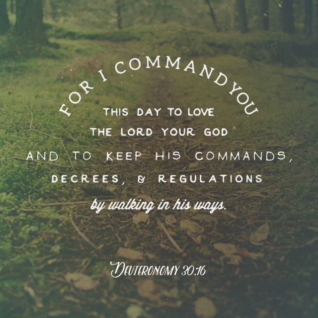 Love the LORD your God and to keep his commands.