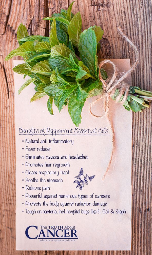 13 Ways Peppermint Essential Oil is Good For Your Health