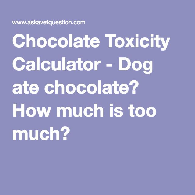 Chocolate Toxicity Calculator - Dog ate chocolate? How much is too much?
