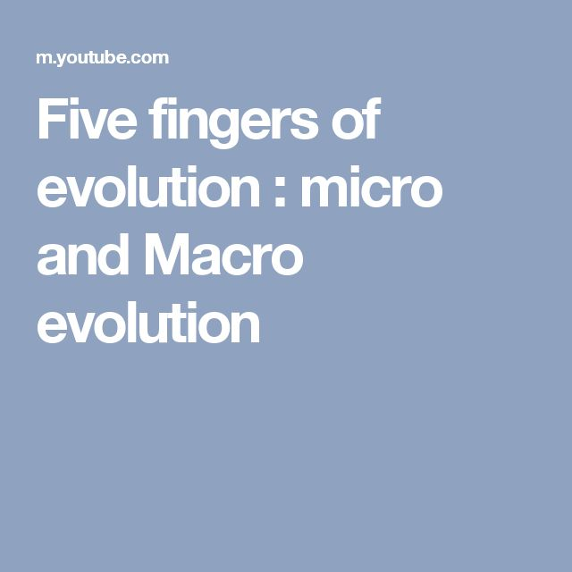 Five fingers of evolution : micro and Macro evolution