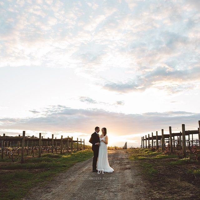 A little bit magic... sunset at Helens Hill winery wedding in Yarra Valley. Image by Vanessa Norris Photography.
