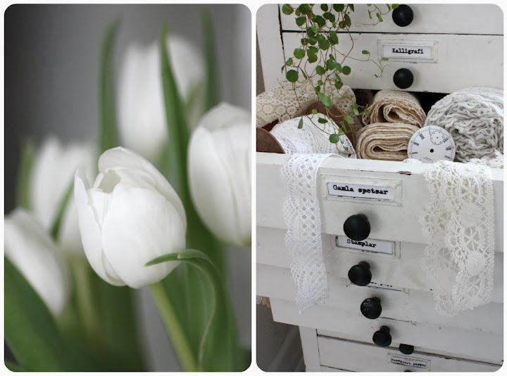Spring inspirations!: Decor Whit, Drawers Full, Wonder White, White Tulips, White Lace, Tiny Drawers