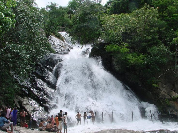 Pollachi Monkey Falls Coimbatore