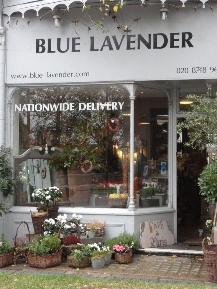 Blue Lavender - shop front - love, love lavender....natural sleeping remedy
