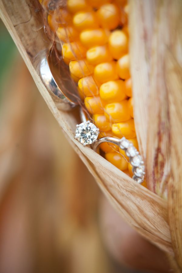 Wedding Ring Photo #Country wedding ... Wedding ideas for brides & bridesmaids, grooms & groomsmen, parents & planners ... https://itunes.apple.com/us/app/the-gold-wedding-planner/id498112599?ls=1=8 … plus how to organise an entire wedding, without overspending ♥ The Gold Wedding Planner iPhone App ♥