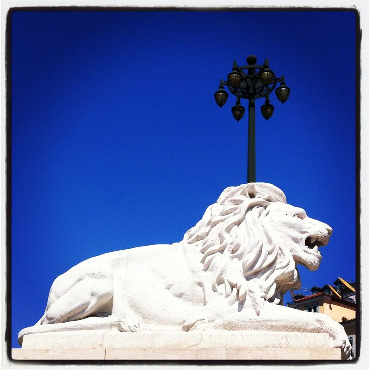 #Holiday in #Portugal. This is #Lissabon or #Lisboa #instagram #lion