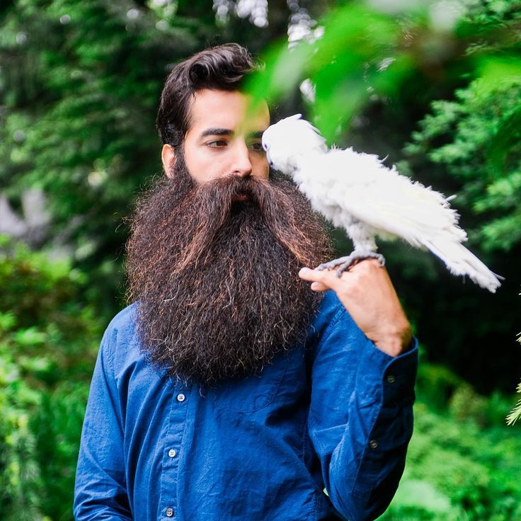 nice 45 Ultimate Long Beard Styles - Be Rough With It