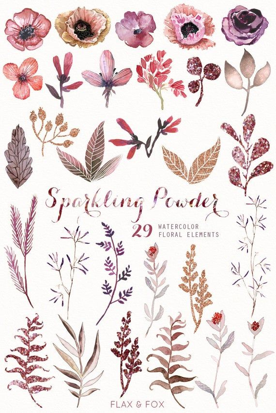 Sparkling Powder 29 Watercolor Elements Hand Painted Clipart