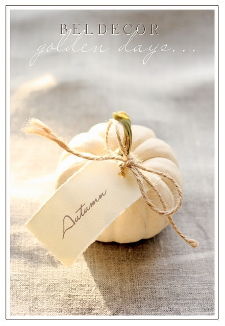 cute idea for name card at holiday table.
