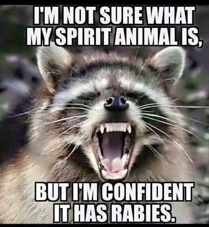 Top Funny jokes (07:45:11 AM, Wednesday 23, November 2016 PST ) – 51 pics