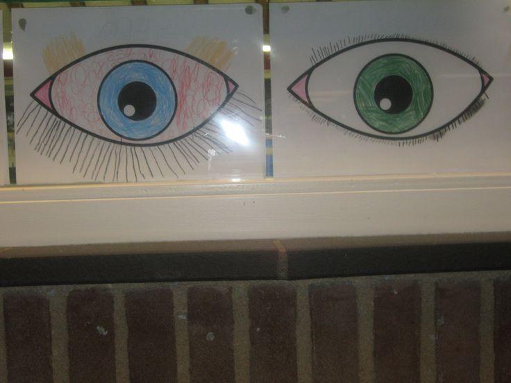 oog   VLL kern 2