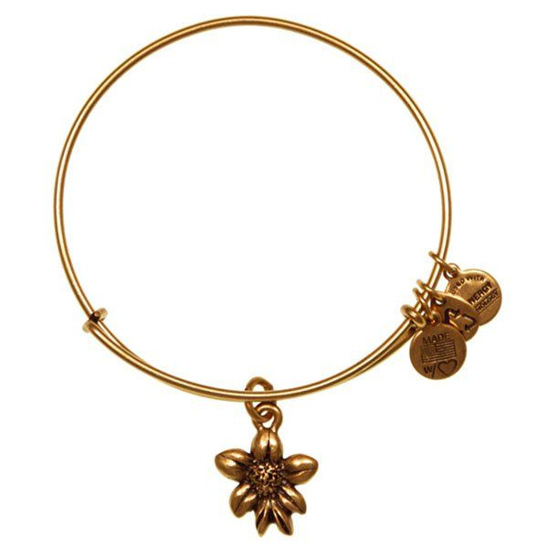 Alex and Ani Apple Blossom Charm Bangle at The Paper Store