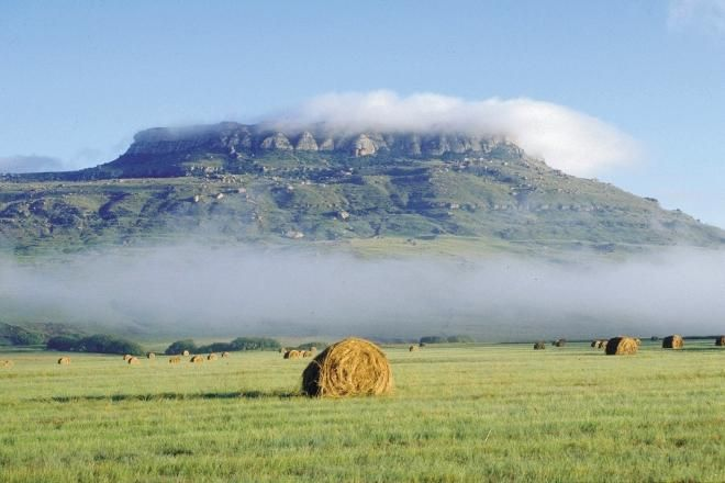 Free State south africa - Google Search