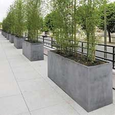 large scale planters used as wall barrier. These would be great filled with bamboo plants