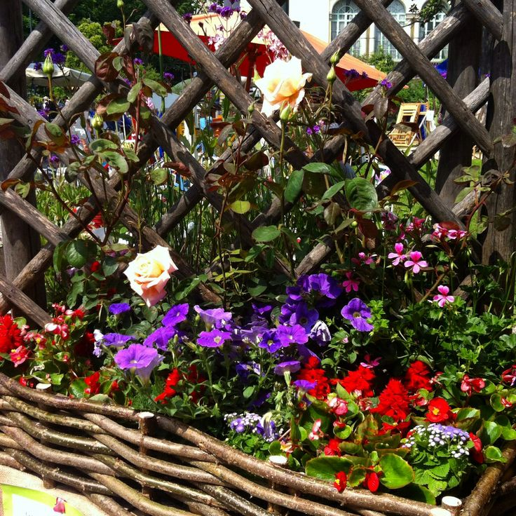 wooden fence with flower basket