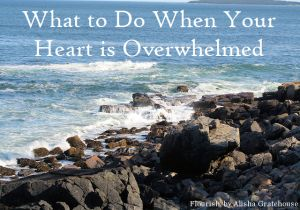 What to Do When Your Heart is Overwhelmed